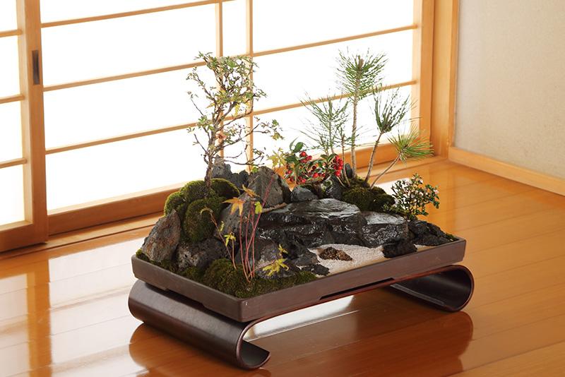 盆景30,000円