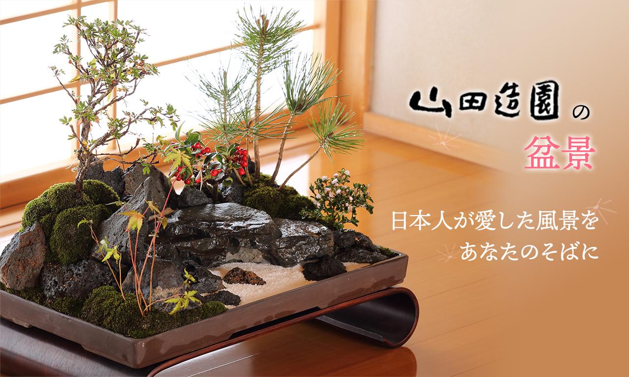 山田造園の盆景