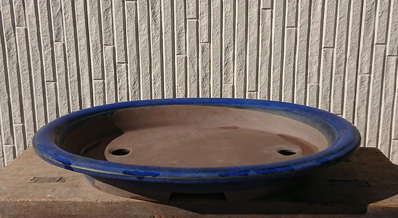 楕円盆栽鉢